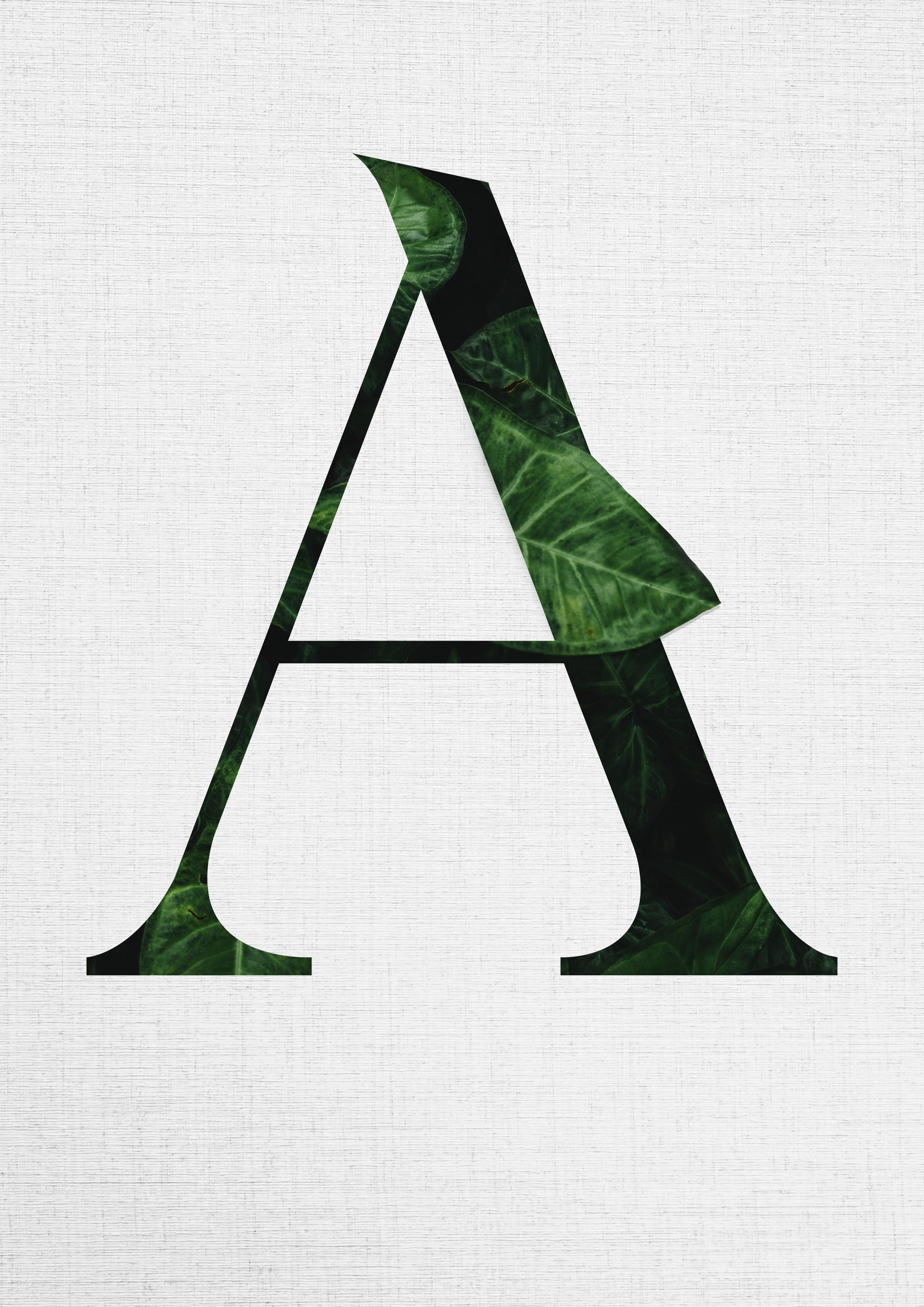 Typografie poster von florian wille design